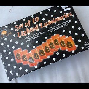 Kurt Adler Holiday - New Kurt Adler Halloween lighted luminaries